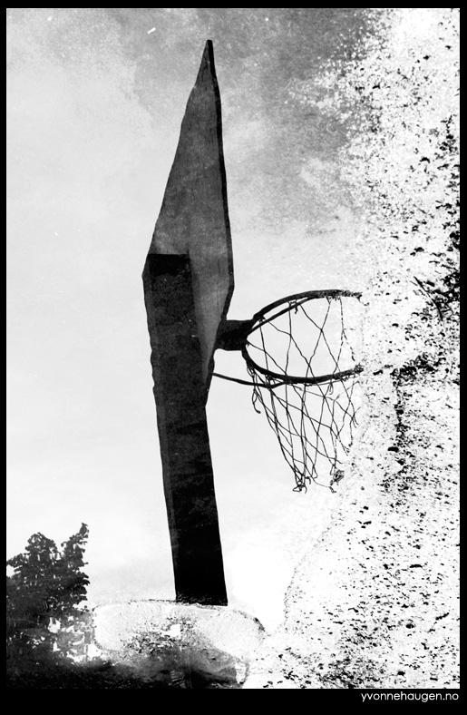 basket-hoop-reflection