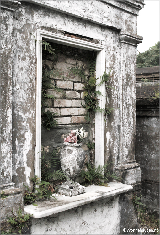 cemetery-new-orleans