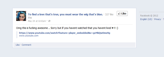Facebook comment about the yhAnimation animated music video for Wide Awake by Katy Perry